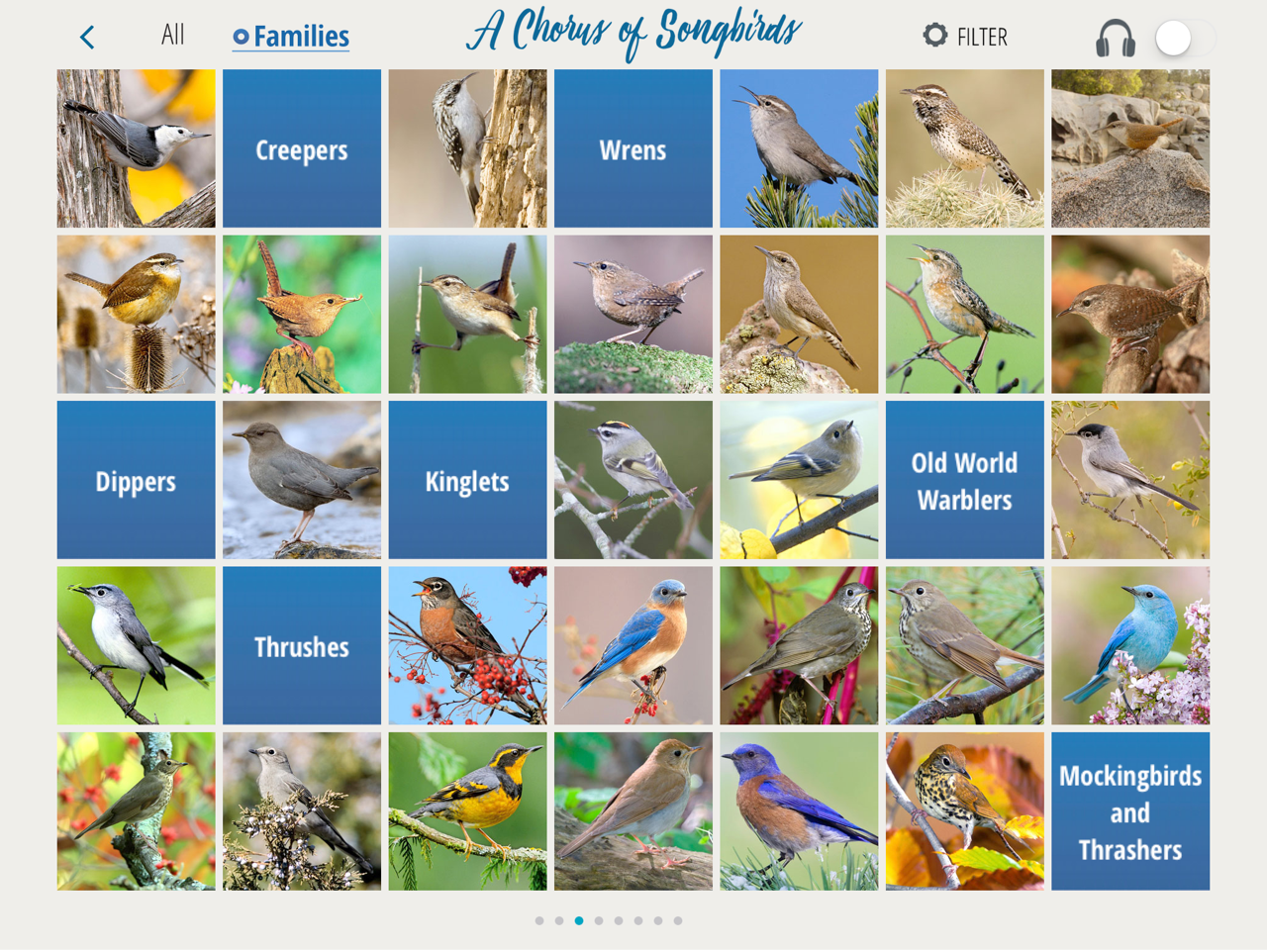 Songbirds App 2